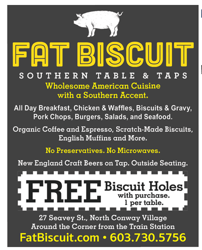 2017 Fat Biscuit